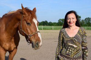 W kontakcie z koniem – Weź go na trawę czyli jak to się wszystko zaczęło